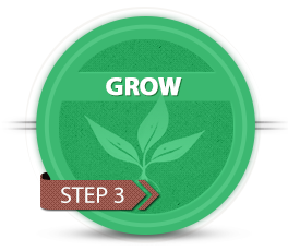 badge-grow-2
