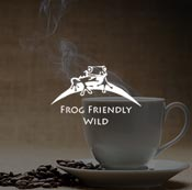 Branding Design Frog Friendly Wild