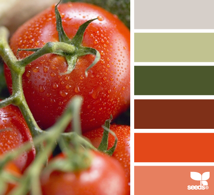 Design Seeds Red Green Colours