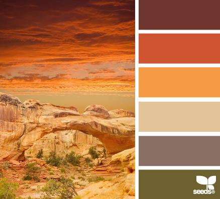 Design Seeds Orange Colours