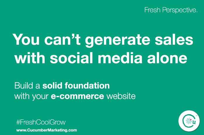 Build a solid foundation with your website before pushing for social media