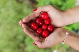 Fresh berries, fresh marketing