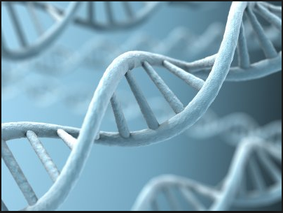 DNA Graphic Image