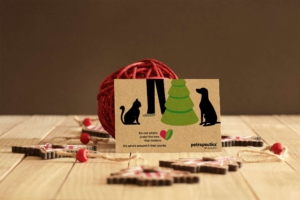 Holiday postcard design and marketing outreach for petrapeutics
