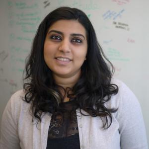 Cucumber Suhani, Marketing Grower