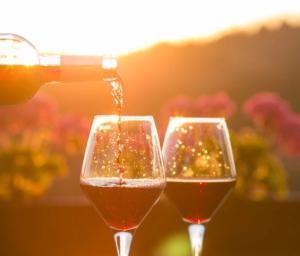 Marketing and web design | Orofino Winery