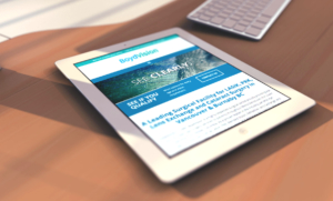 Boydvision responsive website on iPad