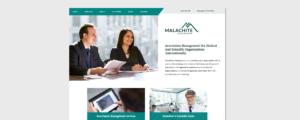 Desktop view for Malachite's responsive website