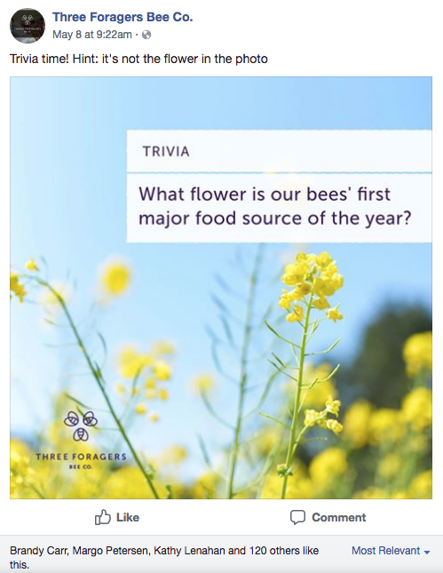Three Foragers Facebook Content